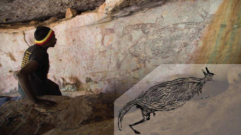 澳洲發現最古老的袋鼠壁畫。(Photo from網路截圖)