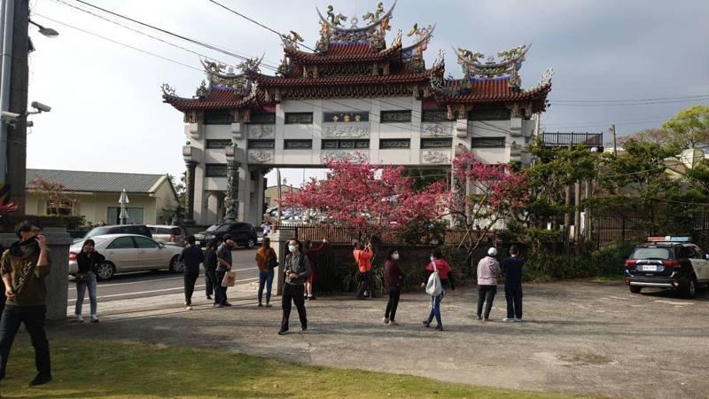 嘉義縣半天岩紫雲寺是縣內著名賞櫻景點。圖/中埔分局提供