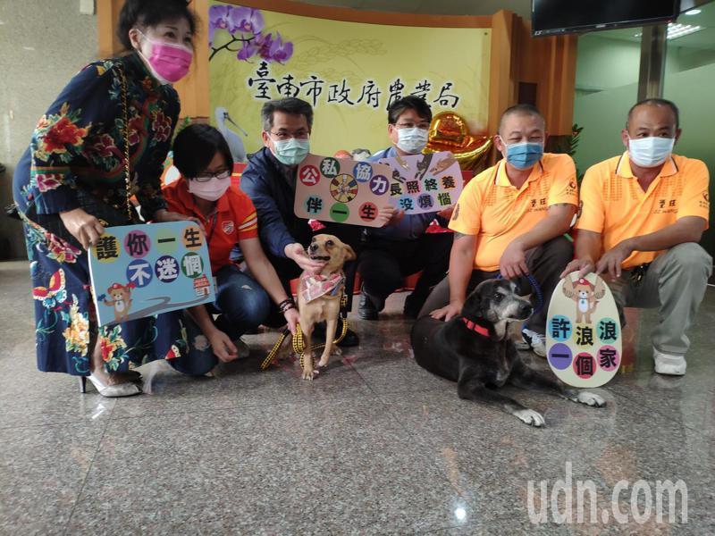 毛小孩也有「長照」,台南市動保處推長期終養,即日起受理申請中。記者謝進盛/攝影
