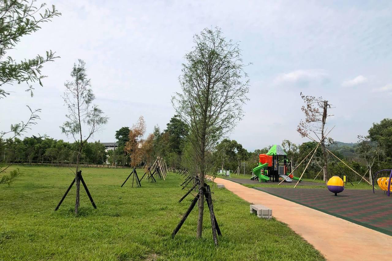 南投首座共融遊憩空間 名間苗圃公園暑假啟用