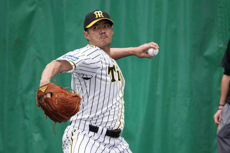 加入阪神虎隊的台灣左投陳偉殷將在28日登板迎戰養樂多隊。 圖/擷自陳偉殷官方粉絲團