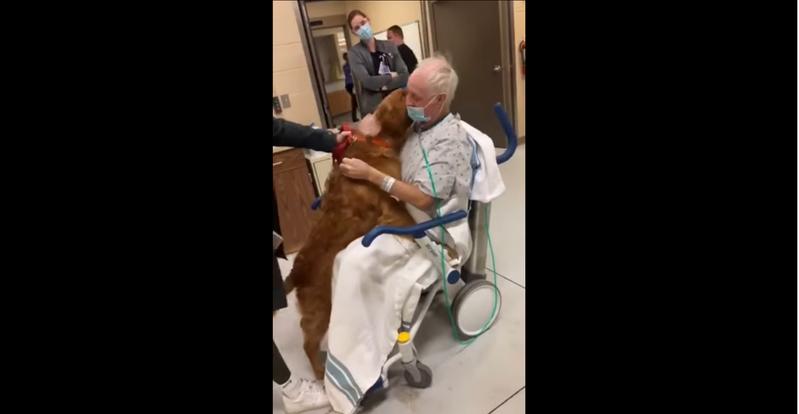 一位外國飼主因病住院,六週沒和狗狗見面。近日終於有機會重逢,興奮的狗狗馬上撲到飼主懷中討抱。圖擷取自youtube