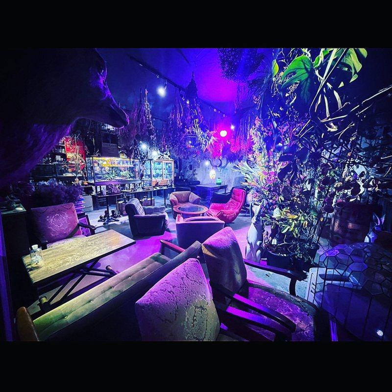 位於日本京都的「秘密基地植物園とカフェバー」咖啡廳,店家刻意採用狂野的自然風格裝潢,讓人彷彿置身於異世界叢林中。圖擷取自twitter