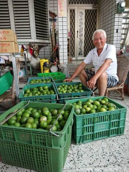 【茶芝飲】的檸檬都是跟屏東內埔的李少章先生和麟洛的青農馮正一先生的果園契作的,用料大方公開