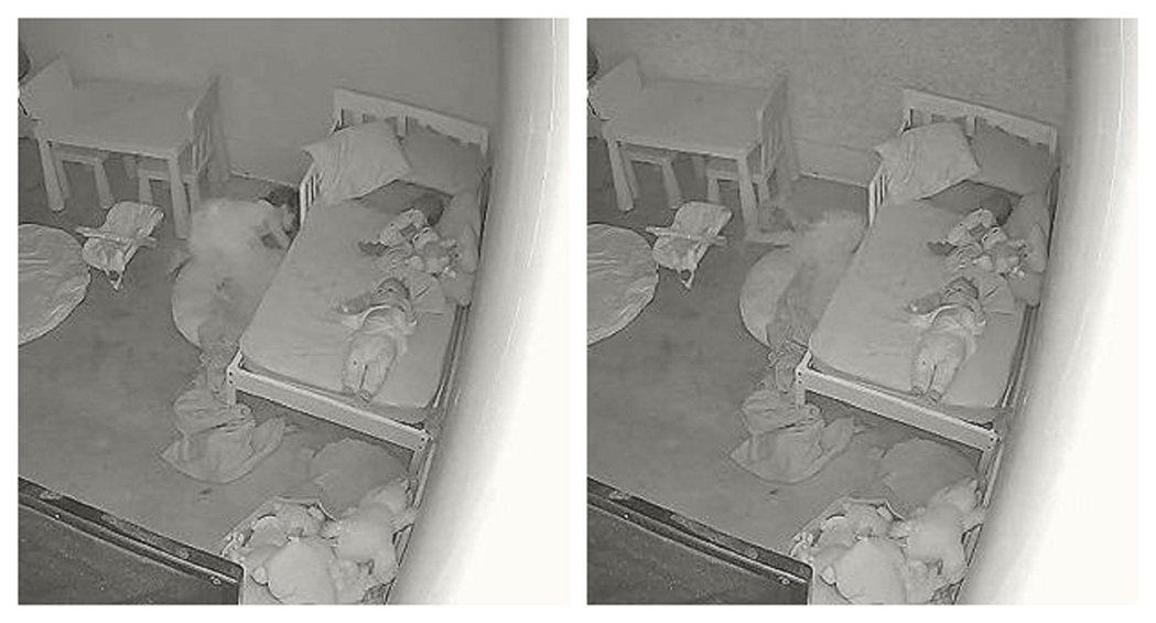 TikTok用戶狄恩22日公布一隻影片,直指他的女兒三更半夜一邊尖叫著「媽媽」,...
