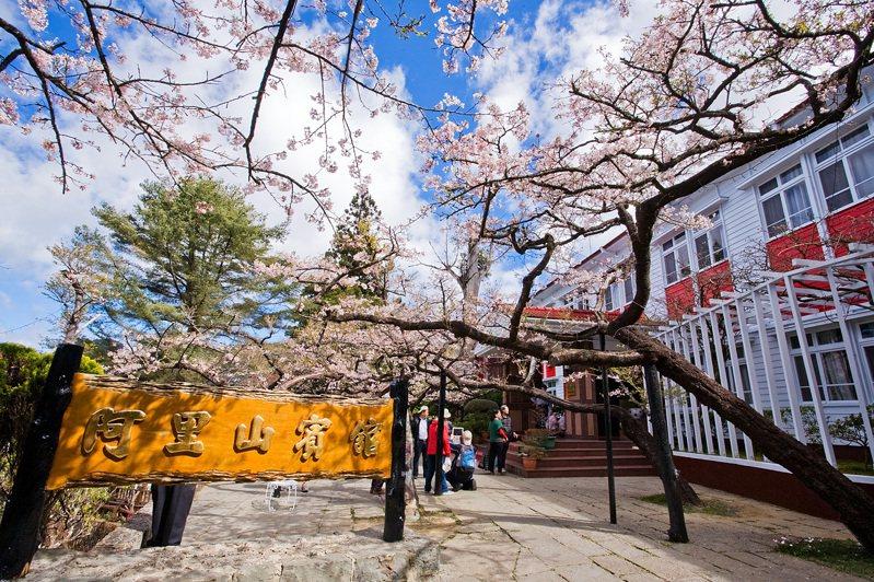櫻花季期間保證入住阿里山上飯店,將賞櫻時間拉到最長。每位參加旅客均能有專屬車票及紀念證書。   圖/雄獅旅遊提供