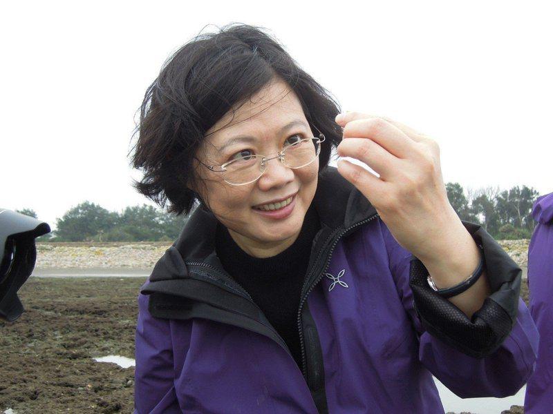 蔡英文總統2013年4月20日參加桃園藻礁活動,仔細觀察藻礁生態小生物,親筆寫下「藻礁永存」承諾。 圖/搶救大潭藻礁行動聯盟召集人潘忠政提供
