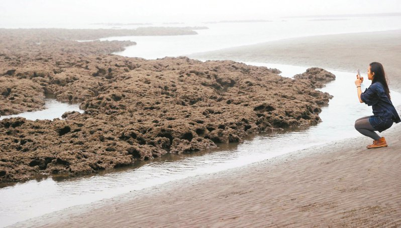 藻礁議題全面延燒,環團力拚公投達標,府院黨全面滅火,被視為一場「小蝦米對決大鯨魚」的戰爭。記者陳正興/攝影