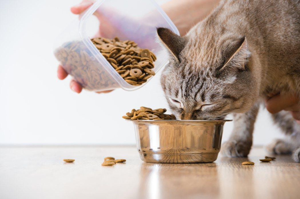 一位日本女性因受不了惡臭,勸鄰居不要再餵食野貓野鳥,卻反而激怒對方,還遭到對方帶...