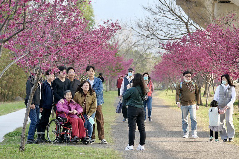 週末的午後,好多家庭不分老少的來踏青散步健行,花兒美、人而更美。