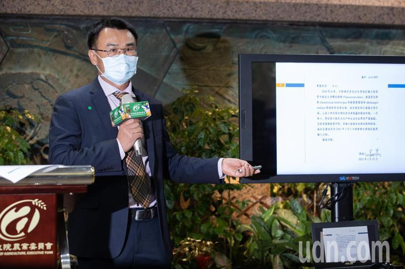 針對大陸暫停台灣鳳梨輸入,農委會主委陳吉仲今天下午召開記者會說明。記者季相儒/攝影