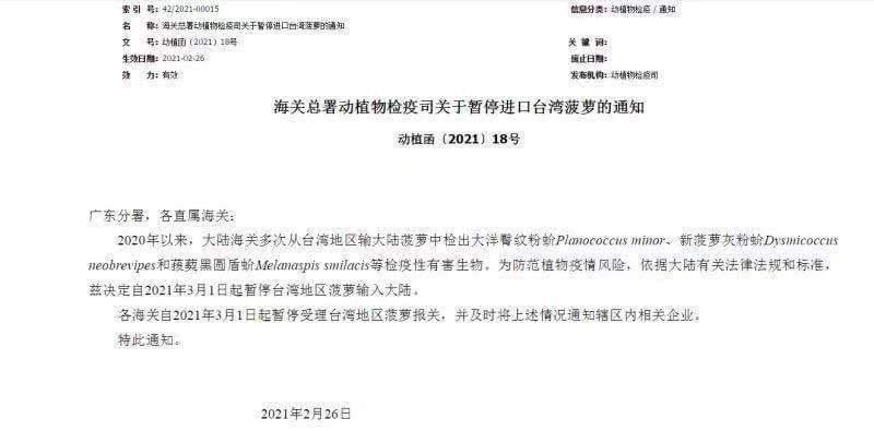 台灣鳳梨正剛進入採收期,中國大陸宣布3月1日起,台灣鳳梨禁止外銷中國大陸,主要是...