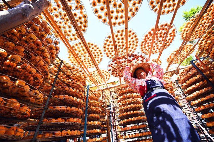 日籍旅台攝影師小林賢伍攝影作品《神明賜與的食物》。圖/新光三越提供
