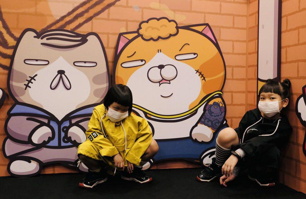 胖球(右)與妹妹斯拉化身小小超模,與白爛貓合照架勢十足。圖/開麗娛樂提供