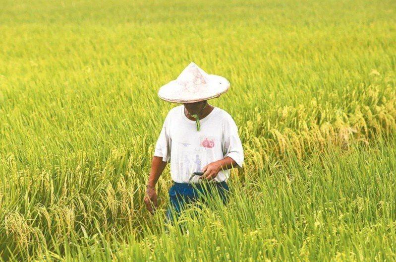 農民退休儲金自元月正式上路,截至2月25日止,已有5萬7千餘人申請開始提繳農退儲...