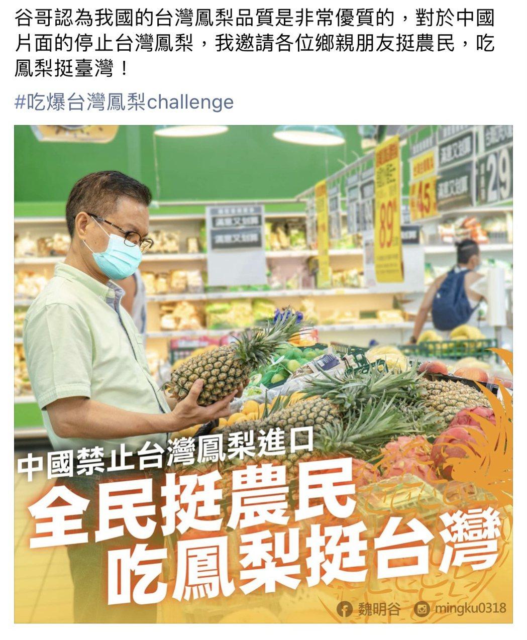 中國無預警的片面暫停台灣鳳梨輸入,讓鳳梨農心慌慌,前彰化縣長魏明谷也在臉書呼籲大...