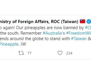 陸禁我鳳梨進口 吳釗燮呼籲國際友人捍衛「自由鳳梨」