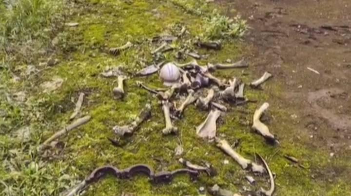 有網友意外發現,用Google Map在車諾比附近的街區滑動時,竟在草地上看見一根根疑似人類的白骨。圖擷自LADBIBLE