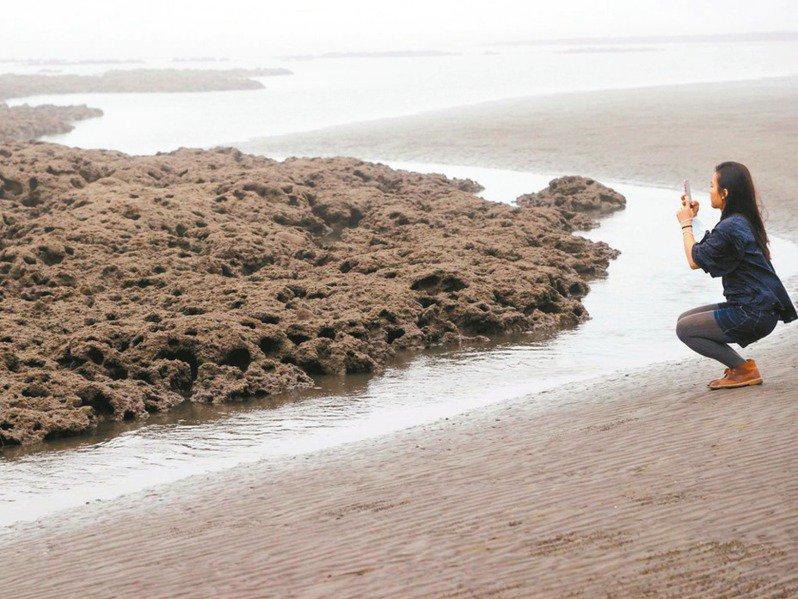 藻礁議題全面延燒,環團力拚公投達標,府院黨全面滅火。圖/聯合報系資料照片