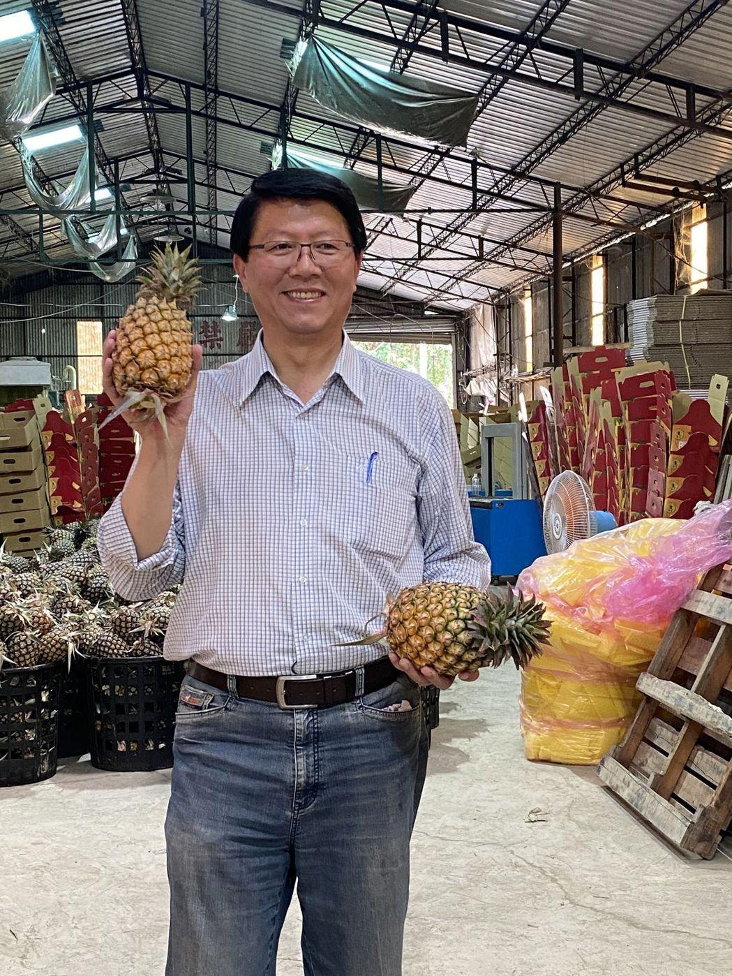 國民黨副秘書長謝龍介認為,將鳳梨問題定調為檢疫是正確的,應趕快協商解決。記者鄭惠...