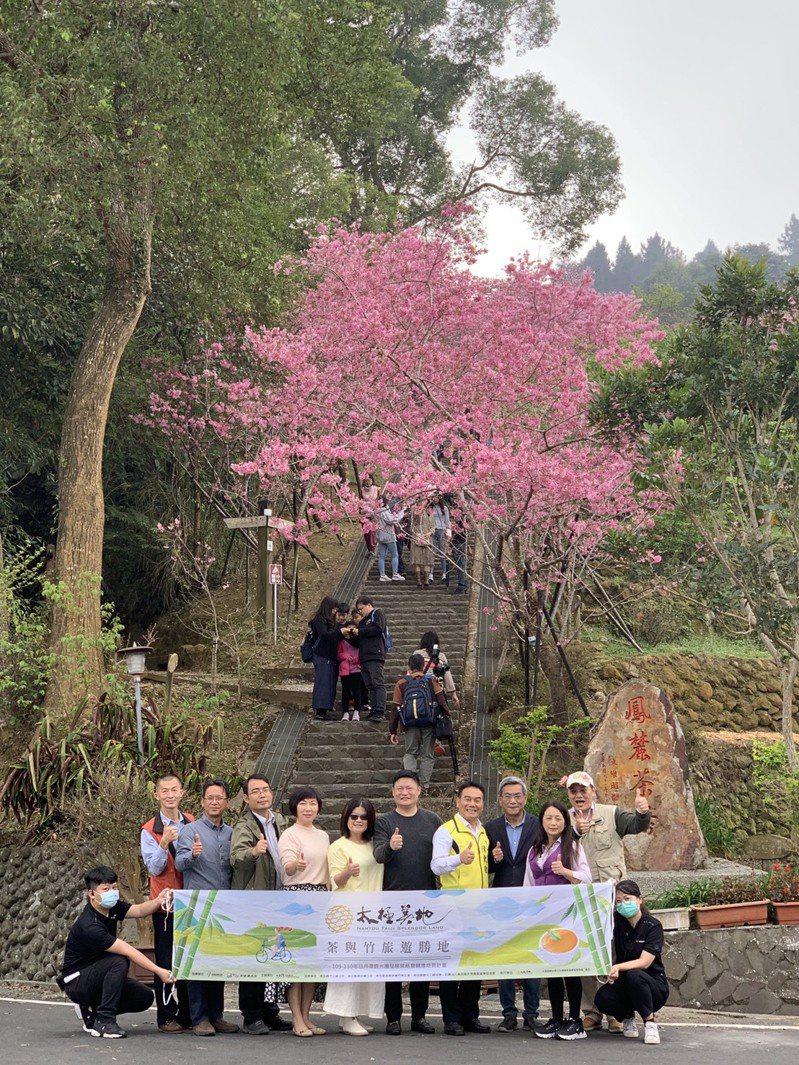 日管處推展「太極美地」觀光,讓遊客深入體驗竹山鹿谷的茶香和竹文化。圖/日管處提供