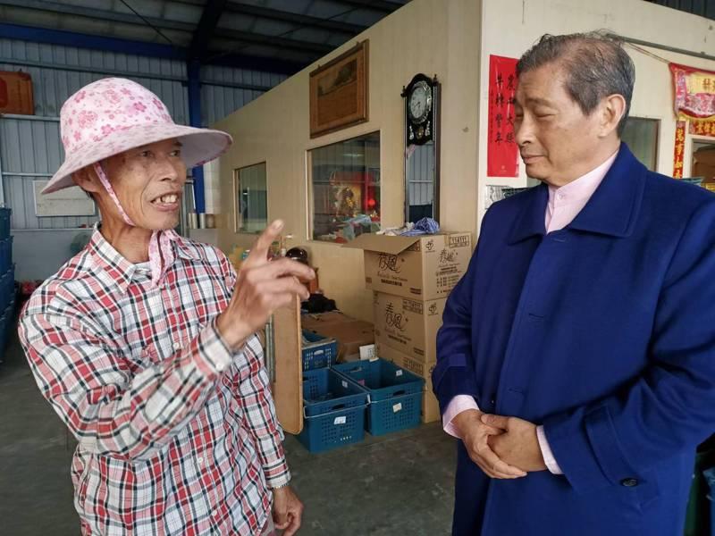 大陸禁止台灣鳳梨進口,中華統一促進黨總裁、綽號「白狼」的張安樂(右),下午由中央委員張孟崇陪同,到嘉義縣大林鎮億鑫合作社關心農民,聽取心聲。記者魯永明/攝影