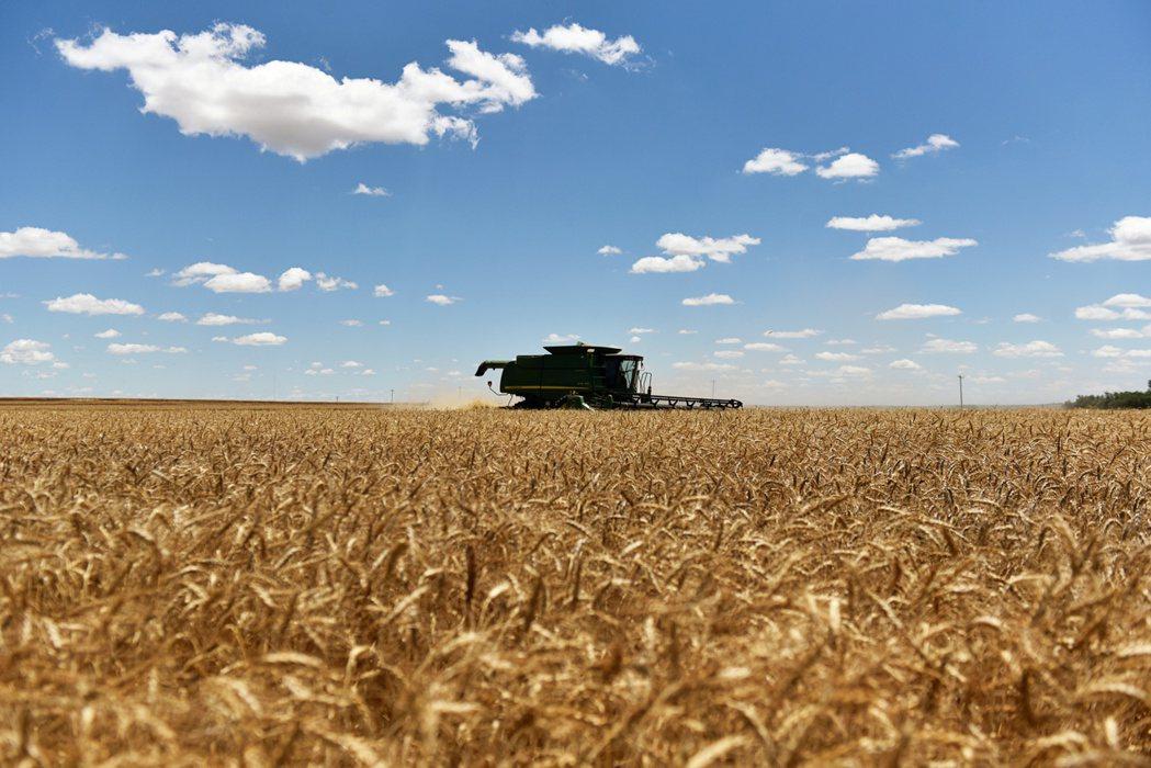 今年來從玉米、原油到銅錠,多種原物料商品走勢亮麗。   路透