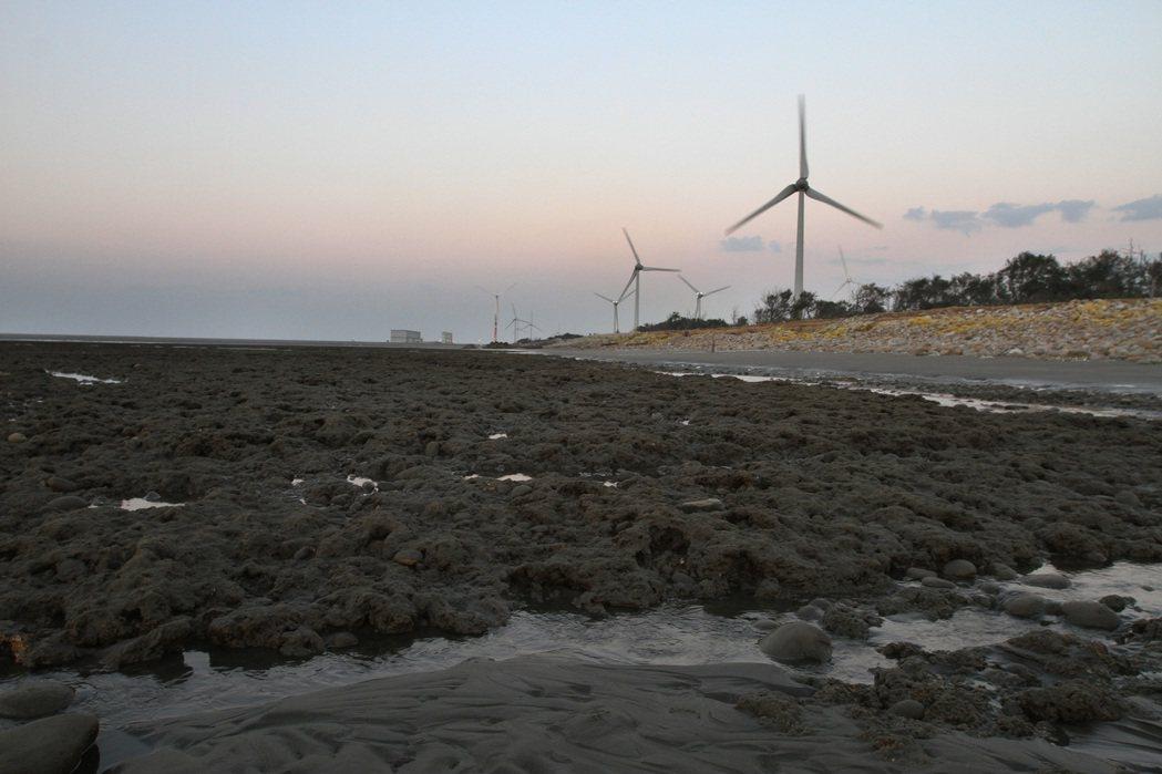 倒數衝刺 藻礁公投連署延燒成「粉紅風暴」,昨天收到三萬四七六八份,目前累計廿三萬...