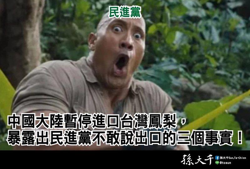 中國大陸暫停進口台灣鳳梨。圖/取自孫大千臉書