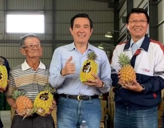 前總統馬英九回憶,2018年高雄大樹區種植50甲鳳梨田的「鳳梨伯」林益請他幫忙,在台南市議員謝龍介的協助下,大陸水果通路商向鳳梨伯訂購了200個貨櫃、1400噸鳳梨。圖/取自馬英九臉書