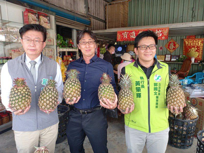 立委郭國文等人(左二)認購台灣關廟鳳梨。記者黄宣翰/攝影