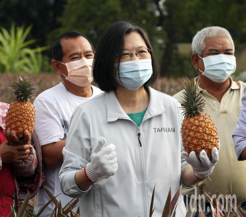 台灣鳳梨被大陸禁止出口,蔡英文總統(中)今天下午到高雄大樹區視察鳳梨產區,強調一定會相挺農民不會讓大家血本無歸。記者劉學聖/攝影