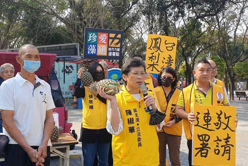 時代力量黨主席陳椒華帶領與會者,在台南新營連署藻礁公投兼義賣鳳梨。記者謝進盛/攝影