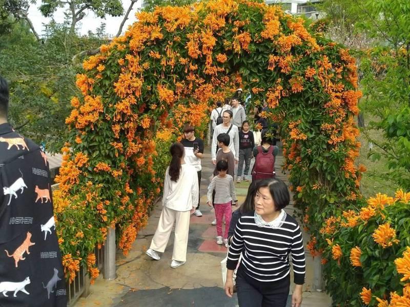 永吉公園因為花朵盛開,吸引大批民眾前往,目前市府已派員管制,避免出現群聚問題。圖/新北市觀光旅遊局提供