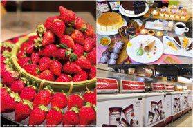 馬辣「大湖草莓吃到飽」延長1個月!299元午茶同步回歸,爽嗑甜點自助吧+哈根達斯