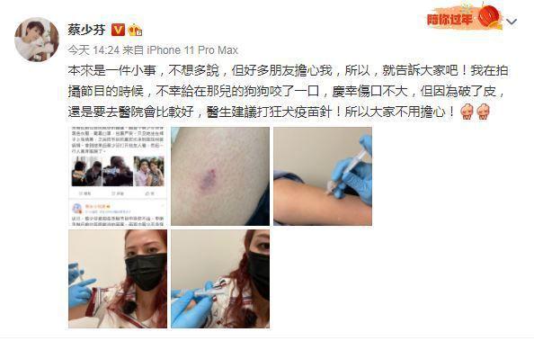 蔡少芬驚曝被狗咬傷。圖/擷自微博