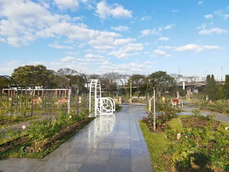 2021台北玫瑰展活動自3月12日至4月4日展出。,台北玫瑰園則全年開放。 圖/...