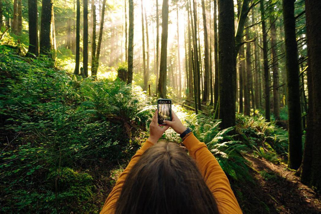 讓所有產業都轉型成為綠色產業加入森林,我們需要把手弄髒,而不只是貼個ESG標籤。...
