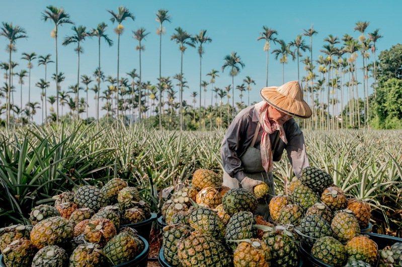 桃園皇家薇庭力挺在地農業,訂席將加贈鳳梨水果切盤。圖/皇家薇庭提供