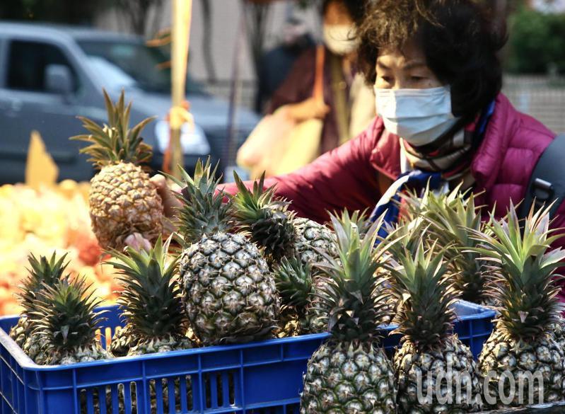 此次大陸暫停進口台灣鳳梨,讓台灣意識到分散巿場的重要性,另外,農產品在未來也要創造更高的附加價值,才能拓展更多新巿場。 記者林俊良/攝影