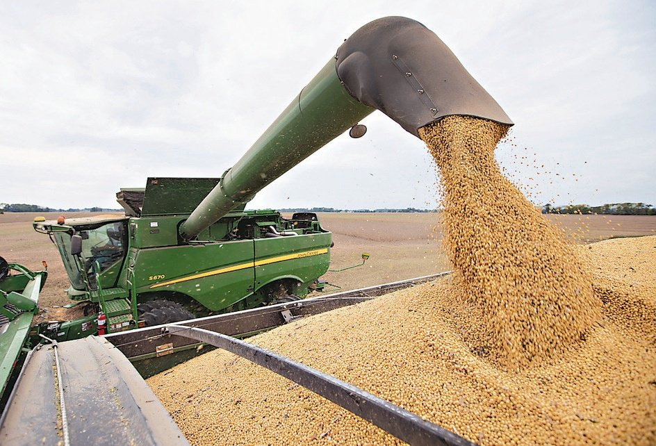 黃豆需求持續增長,價格走勢被看好。(美聯社)