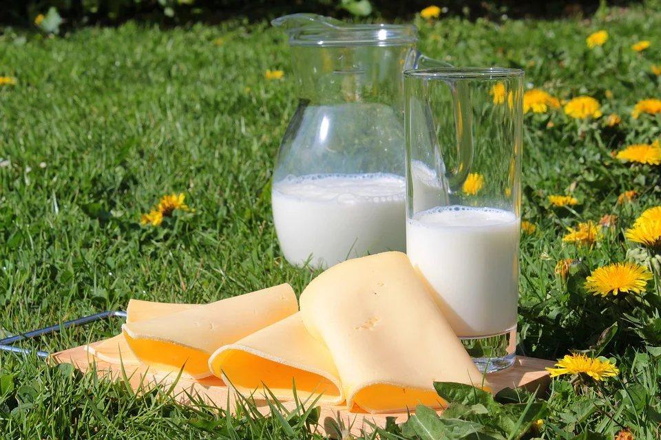 鈣質含量高的乳製品 圖/pixabay