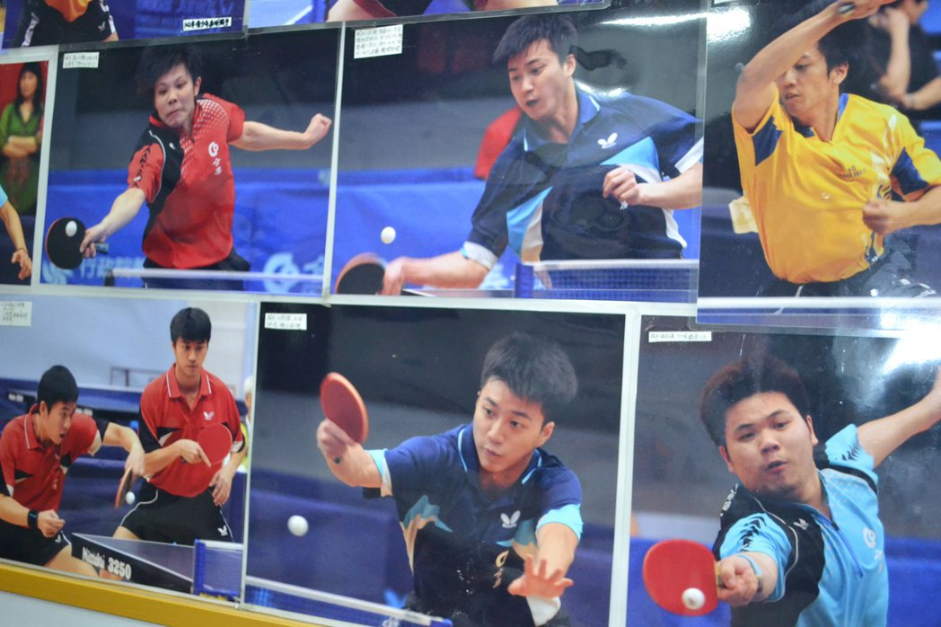 已故桌球教練林忠雄女兒林怡芳經營的桌球館,貼著江宏傑和師兄弟打球的照片。記者鄭惠...