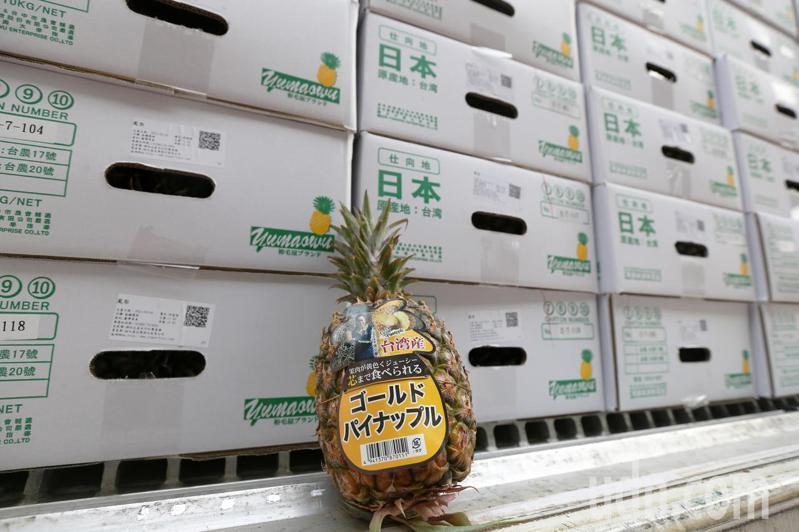 農糧署打開台灣鳳梨銷日多元通路銷售台灣鳳梨,希望能為滯銷鳳梨找尋更多銷售管道。記者劉學聖/攝影