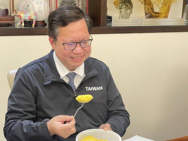 桃園市長鄭文燦日前接受朝日電視台節目訪問時,大啖台灣鳳梨行銷,不過最後節目並未播出這段畫面。記者張裕珍/翻攝
