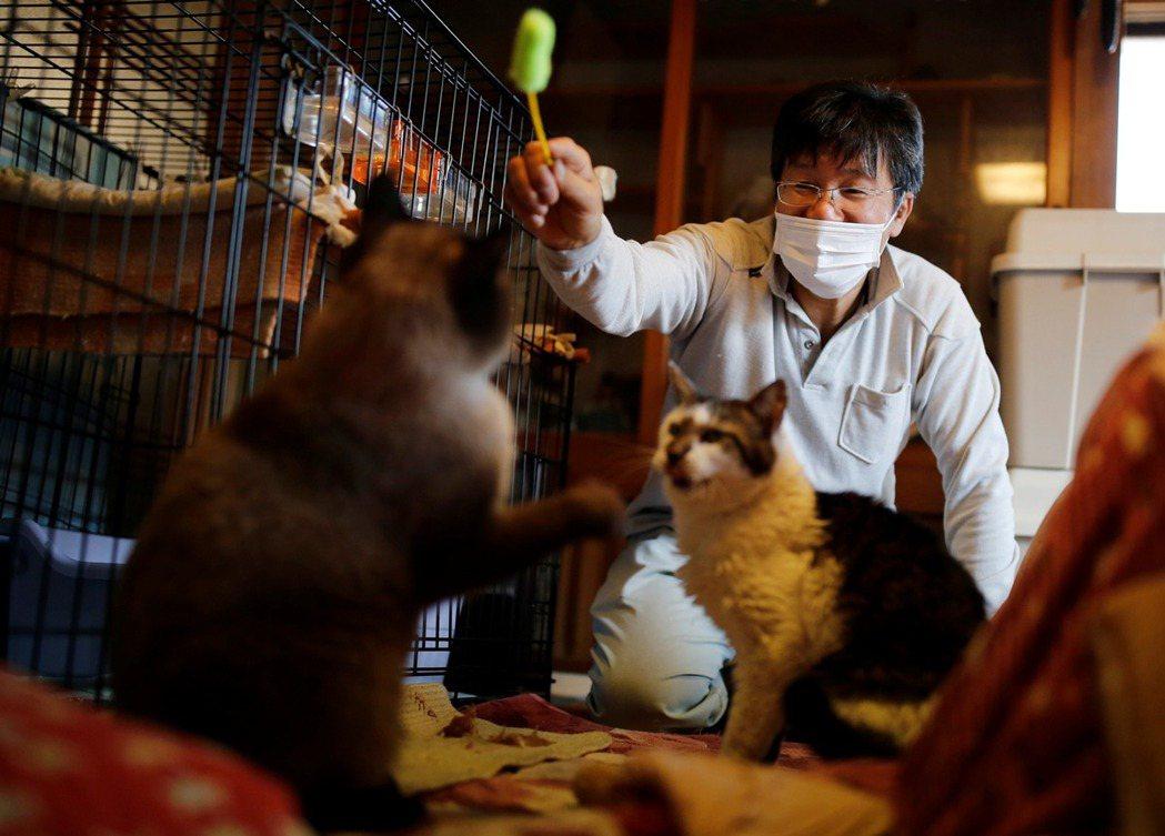 日本311將滿十年,受到嚴重核災影響的福島縣浪江町,至今仍有八成區域依然是限制進...