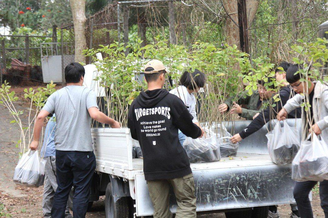 嘉義大學今年準備2400株苗木供民眾兌換丶綠美化。記者卜敏正/翻攝