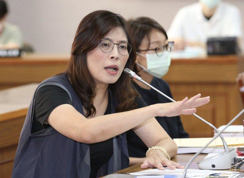國民黨立法院黨團書記長鄭麗文。圖/聯合報系資料照片