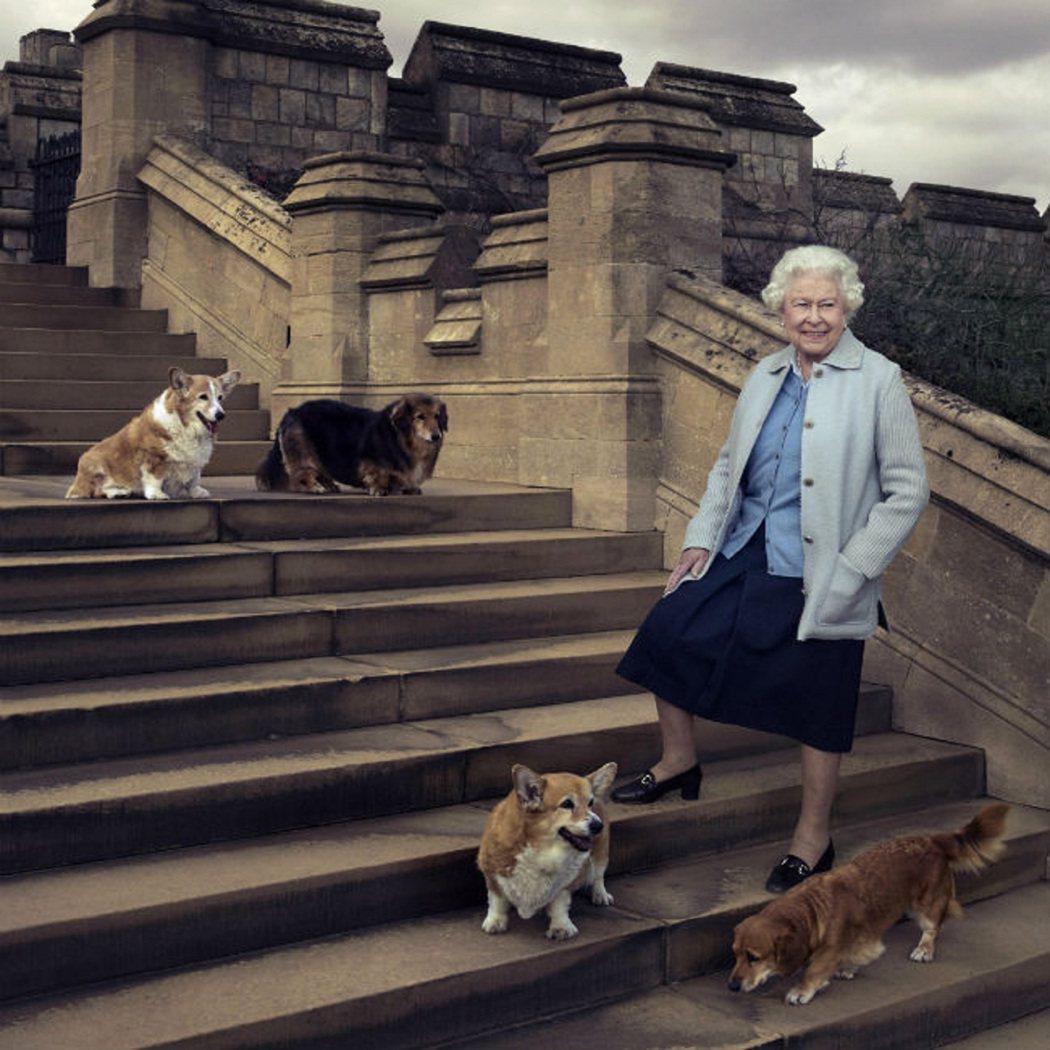 英國伊莉莎白二世女王與柯基犬合影資料畫面。路透/Bang Showbiz