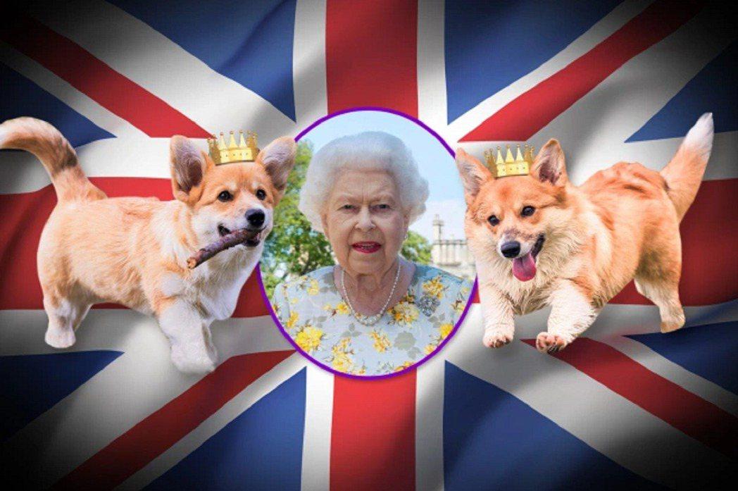 太陽報繪製的女王與2隻新柯基犬想像圖。畫面翻攝:The Sun